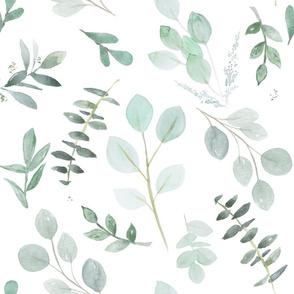 Blue Green Eucalyptus  Greenery Watercolor