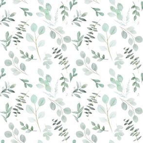 Eucalyptus Blue Green Watercolor