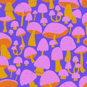 Mushrooms at Twilight