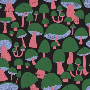 Mushrooms at Midnight