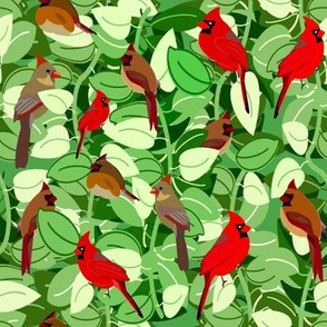 Cardinals in the Vines