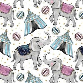 Starlight CIrcus Elephants & Tents