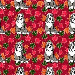 Cartoon Beardie Maple Leaves Red