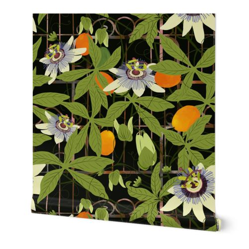 Passionflowers climb a rusty gate