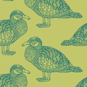Blue Duck Green