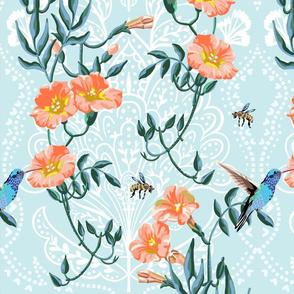 trumpet vine and hummingbird