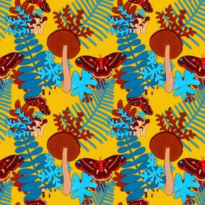 mushterpiece - mushrooms and moths