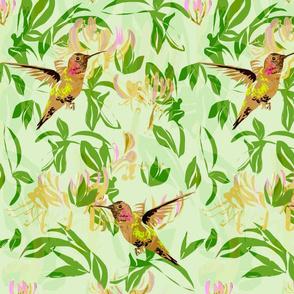 Hummingbirds and Honeysuckle