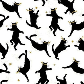 Black Ninja Cats on White Background / Small