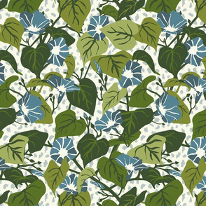 Climbing Morning Glories - Medium - Cream