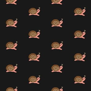 Lolamer - Snail on dark background