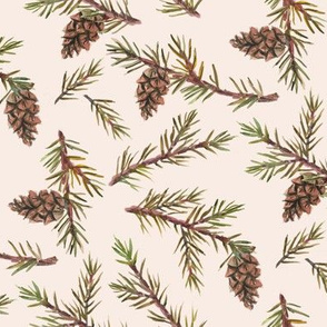 Pine Cones and Needles