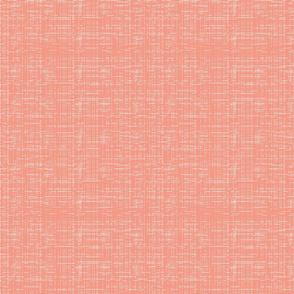 Lolamer - Texture salmon