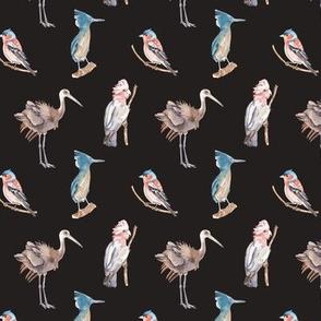 Birds Pattern 5 Dark