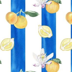 Citrus Pattern 5
