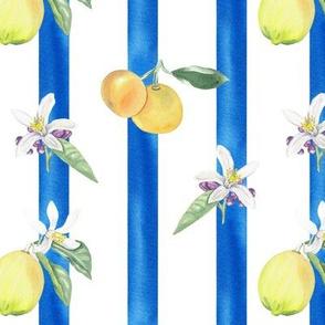Citrus Pattern 6