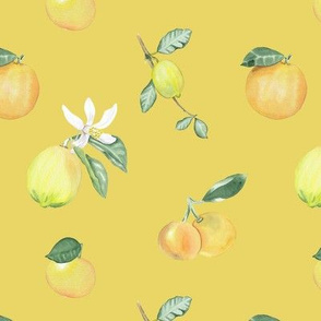 Citrus Pattern7 Lemon Serbet