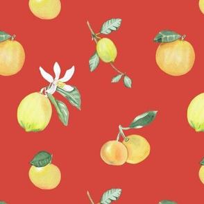 Citrus Pattern 7 Oxy Fire