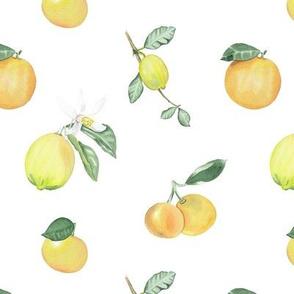 Citrus Pattern 7 White