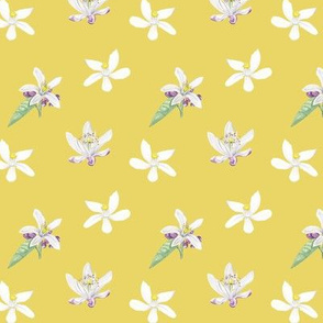 Citrus Pattern 8 Lemon Serbet