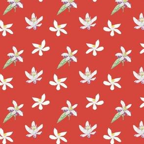 Citrus Pattern 8 Oxy Fire