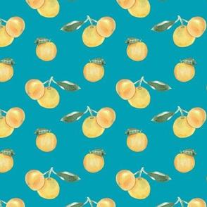 Citrus Pattern 9 Aqua