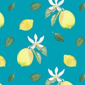 Citrus Pattern 10 Aqua