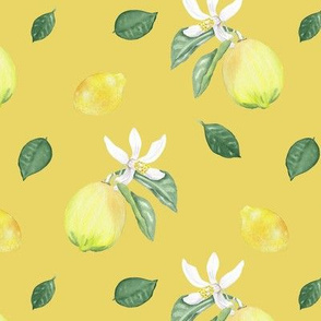 Citrus Pattern 10 Lemon Serbet