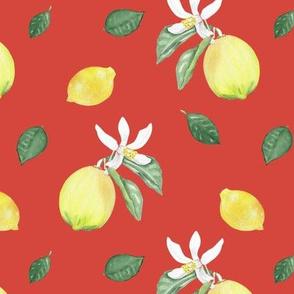 Citrus Pattern 10 Oxy Fire