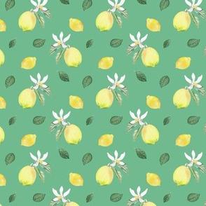 Citrus Pattern 10 Quite Wave