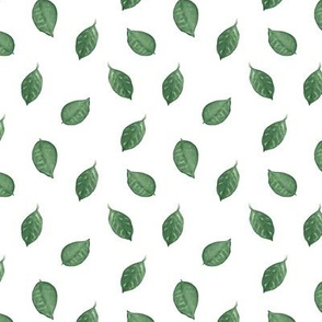 Citrus Pattern 11 White