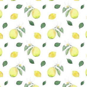 Citrus Pattern 10 White