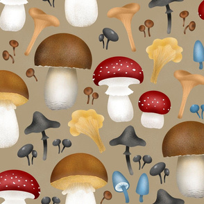 Mushrooms-on-moss