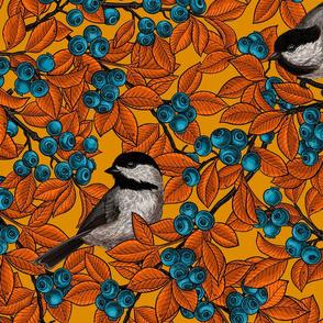 Chickadee birds on blueberry branches on orange