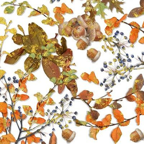 Fall Foliage White