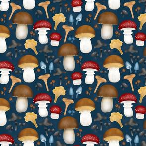 Mushrooms-on-blue-smallscale