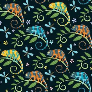 Colorful chameleons dark