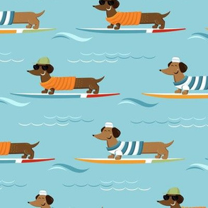 Dachshund on vacations