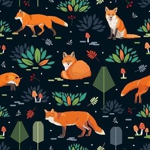 Red foxes dark