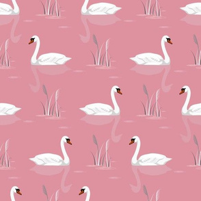 Swans on the pond. Diagonal pink