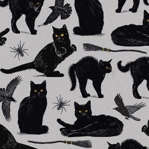 Normal scale • Witch black cat