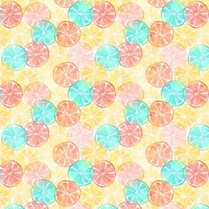 Fruit Slices - XSmall