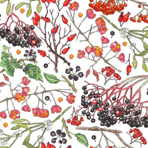 just berries