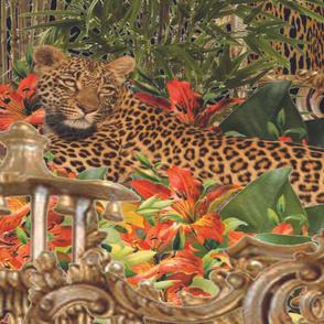 Asian Jungle Cats 97cm