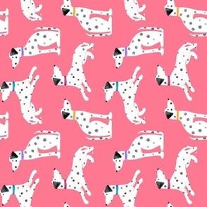 Watermelon Kitten Princess