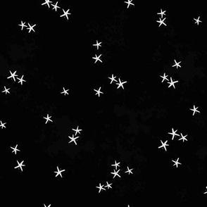 Pumpkin Stars { black }