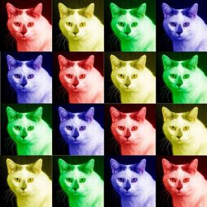 Rainbow Cat - Large