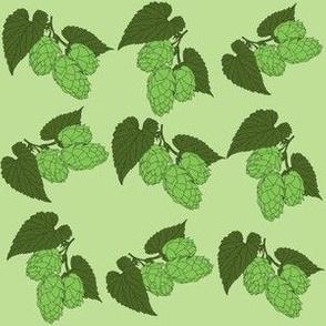 Green Hops on Light Green