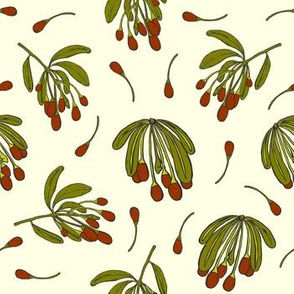 Goji Berries On Ivory