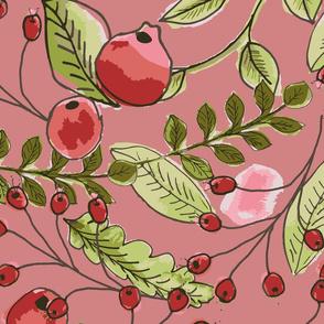 cranberries-01